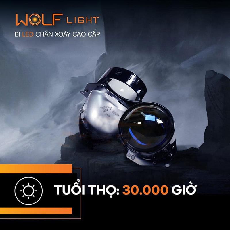 Bi led Aozoom Wolf Light